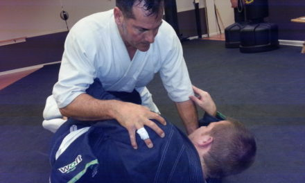 I practice two disciplines at Basches Martial Arts. Fort Wayne Fitness Blog
