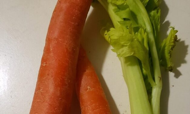 Carrots and Celery. Fort Wayne Fitness Blog