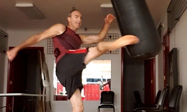 Would you rather kick or punch? Fort Wayne Fitness Blog