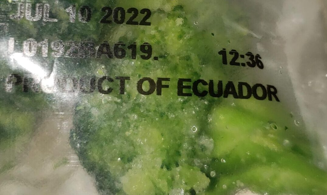 Should I buy frozen Broccoli from South America?